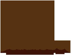 commodus gmbh logo